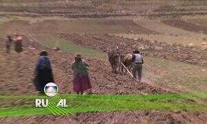 Globo Rural - Edição de 26/02/2017