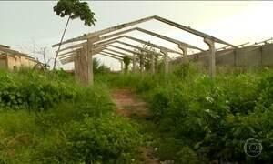Terrenos abandonados viram problema de saúde pública e segurança
