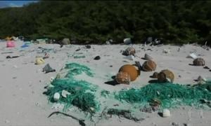 Ilha deserta do Pacífico acumula maior densidade de plástico do planeta