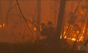 Portugal, Espanha e Grécia lutam para combater os incêndios florestais