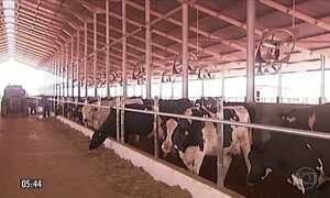 Centenas de produtores rurais protestam contra a queda no preço do leite