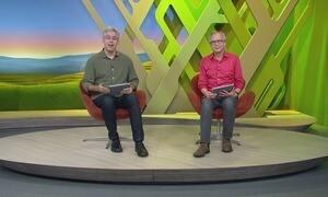 Globo Rural - Edição de 19/11/2017