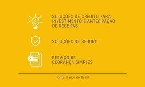 Linhas de crédito para importação e para capital de giro ajudam empresários