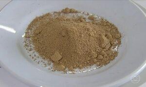 Você sabia que semente de jaca tem cheiro de chocolate?