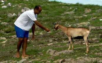 Isolados - Parte 1 - Caco Barcellos e sua equipe viajam para os lugares mais distantes do país atrás dos brasileiros que vivem isolados. No extremo oeste de Rondônia, há os últimos sobreviventes de uma tribo em extinção.