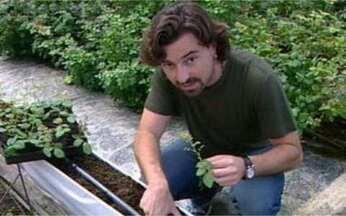 Emílio Orciollo Netto conhece um roseiral de verdade - Reveja a matéria que o Vídeo Show fez na época de Alma Gêmea.