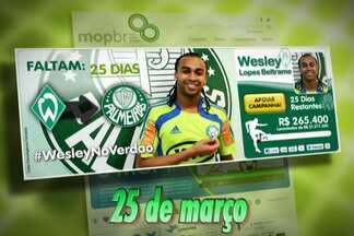 Entenda como funciona a doação da torcida do Palmeiras para contratar volante Wesley - Diretoria do Verdão lança mecanismo para o torcedor fazer doações por meio de cotas de R$ 100.