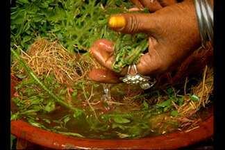 Conheça a história e como funcionam os banhos de cheiro no Pará - A tradição de São João de Purificação no estado se reveste do popular e tem nas ervas um tipo de banho que purifica e renova a fé e as tradições dos paraenses. Diz o costume que o banho deve ser tomado na véspera do São João.