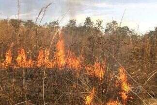 Incêndio atinge Morro do Serrinha e ameaça barracos, em Goiânia - Bombeiros demoraram 1 hora para controlar fogo, no domingo (5). Queimada consumiu 3 mil metros de vegetação, sem danificar construções.