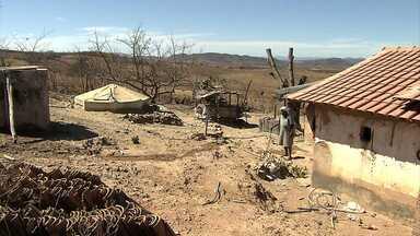 Seca toma conta de 117 municípios mineiros - No Norte do estado não chove há 70 dias.