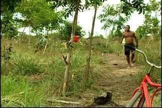 Área de empresa de celulose é invadida em Conceição da Barra, ES - Cerca de 800 pessoas ocuparam o terreno de 47 hectares. Fibria informou que o terreno faz parte de uma área de preservação.