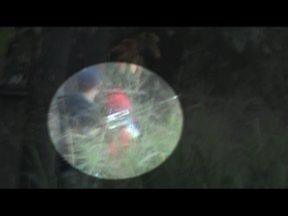 Repórter cinematográfico flagra homens armados com fuzis em via expressa do RJ - Imagens foram feitas na manhã desta sexta-feira (17), na beira da Linha Vermelha, uma das mais importantes vias expressas do Rio de Janeiro. Os bandidos estavam a cem metros de um posto da polícia militar.