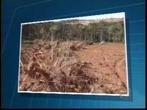 Polícia ambiental descobre desmatamento em São João do Triunfo - Três pessoas foram levadas para a delegacia da cidade