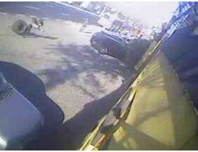 Câmeras de segurança registram momento em que roda de caminhão atinge mulher na calçada - O acidente foi registrado pelas câmeras de segurança de uma empresa, próxima ao ponto de ônibus movimentado na altura de Vigário Geral. A jovem atingida chegou a ser levada com vida para o hospital Getúlio Vargas, mas não resistiu aos ferimentos.