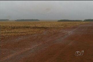 Com o fim do vazio sanitário, agricultores de GO já podem começar o plantio da soja - Com o fim do vazio sanitário, os agricultores que estão com sementes estocadas na fazenda só dependem agora de boa chuva.