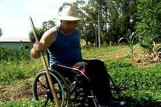 Determinação e força são palavras de ordem na vida de agricultor cadeirante - Agricultor de Estrela, no RS, sofreu acidente em 2005, mas mesmo assim continua trabalhando nas lavouras que mantém no sítio onde mora.