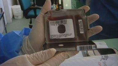 Hemoce cria banco para receber sangue doado de cordão umbilical - Banco demorou cinco anos para ser concluído.