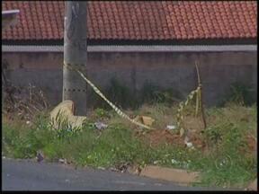 Menor e rapaz são mortos com tiros na cabeça em Penápolis, SP - Uma adolescente de 14 anos e um rapaz de 21 foram mortos em Penápolis (SP). Eles estavam em frente à casa da menor na noite desta terça-feira (9), quando um homem passou de carro atirando. As vítimas foram atingidas na cabeça.