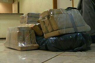 Polícia apreende maconha escondida dentro de sacos de amendoim em Jataí, GO - Maconha escondida em sacos de amendoim que estavam dentro de um ônibus foi apreendida pela polícia essa madrugada na região sudoeste do estado.