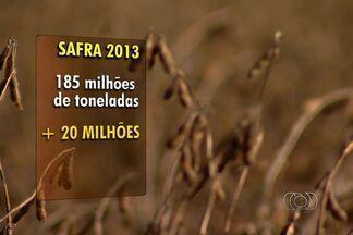Produtos agrícolas deverão ter queda de preço nos próximos três anos, em Goiás - Produtos agrícolas como soja e milho têm previsão de bons preços para os próximos 3 anos. É o que concluiu a expedição da safra 2013, que percorre o mundo avaliando a produção de alimentos.