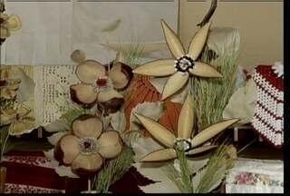 Mulheres do Norte de Minas fazem artesanato a partir de sementes e folhas - Folhas, sementes e outros materiais são usados no artesato em Riacho da Cruz, distrito de Januária, Norte de Minas Gerais.