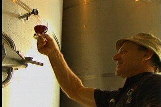 Ministério da Agricultura quer facilitar a venda de vinhos produzidos por agricultores fam - Projeto vai ser elaborado em parceria com entidades do setor vitivinícola