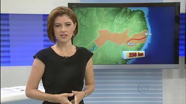 Duas crianças e uma mulher são assassinadas em Buíque, no Agreste - Crime aconteceu na zona rural do município. De acordo com a polícia, os três corpos foram encontrados dentro da casa onde as vítimas moravam.
