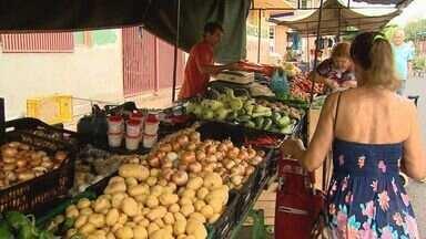 Segundo levantamento, frutas e legumes tiveram elevação de preços durante todo o ano. - Ceagesp divulga índice de inflação em 2012
