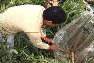 Campo Grande registra 5 mil notificações de casos de dengue nos últimos 15 dias - Em 15 dias, Campo Grande registrou quase 5 mil casos notificados de dengue. A doença se tornou uma grave ameaça para a comunidade e um desafio para as autoridades.