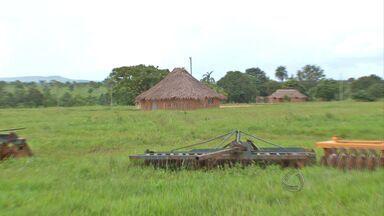 índios de duas aldeias da região de Nobres mudam a forma de plantar o arroz - Com apoio de órgãos públicos, índios de duas aldeias da região de Nobres mudam a forma de plantar o arroz. Com mais acesso à tecnologia, eles esperam agora aumentar a produtividade e melhorar a alimentação das famílias.