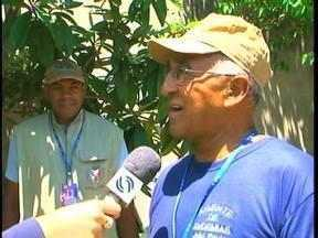 Larva do mosquito da dengue é encontrada no Centro de Uruguaiana - Agentes estão mobilizados na cidade.