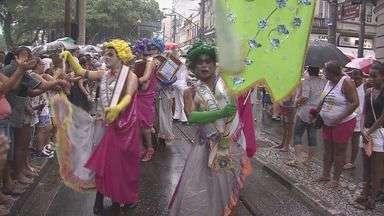 Três bandas de carnaval fazem a festa de foliões em bairros de Santos - Outra atração na cidade é o Carnabonde. Veja a programação