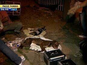 Incêndio deixa uma mulher ferida e causa a morte de mais de 30 cães em Porto Alegre - Causa do incêndio é desconhecida.