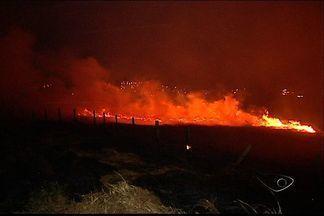 Incêndio em vegetação quase deixa Grande Vitória às escuras, diz Furnas - Fogo ocorreu embaixo das principais vias de transmissão de energia.Chamas atingiram uma área de vegetação no bairro Areinha, em Viana.