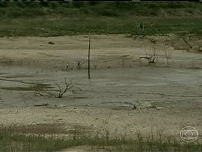 Seca preocupa norte de Minas Gerais apesar das chuvas no estado - Apesar da chuva ter voltado, a seca ainda preocupa, pois a quantidade registrada está bem abaixo do esperado para o período, desde o início do ano.