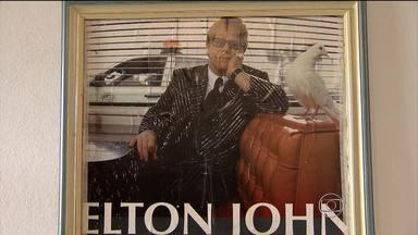 Elton John faz show neste sábado (9) na capital mineira - Evento acontece no estádio do Mineirão, Região da Pampulha. Portões serão abertos às 22h.