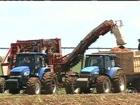 Falta de mão-de-obra obriga agricultores a investir na mecanização das lavouras - As máquinas agrícolas vem suprir as necessidades dos produtores que não encontram mão-de-obra para o trabalho. Atualmente está cada vez mais difícil encontrar trabalhadores qualificados no campo.