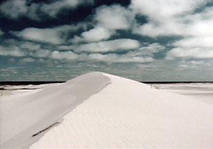 Com paisagem de deserto e planícies sem fim, litoral gaúcho nem parece Brasil - Ventos que podem soprar a mais de 100 km/h esculpem a areia e formam as durnas que contornam o litoral do extremo sul do país. Região é morada de um animal misterioso que não existem em nenhum outro lugar: o tuco-tuco.