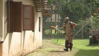 Mais de mil pessoas já pegaram dengue em Jacupiranga, SP - Cidade fica no Vale do Ribeira, e os moradores estão preocupados.