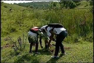 Área rural de Rio das Ostras, RJ, é alvo de projeto ambiental de estudantes - Alunos de Cantagalo viajaram ao local para plantar 300 mudas de espécies típicas.Professores e agrônomos acompanharam e auxiliaram o trabalho das crianças.