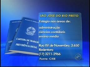 Veja as vagas de emprego disponíveis para o noroeste paulista - O Tem Notícias desta segunda-feira (25) traz vagas de emprego em três cidades da região de São José do Rio Preto (SP). Veja para onde enviar o seu currículo.