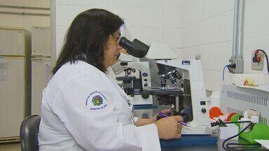 Sistema Único de Saúde disponibiliza exame rápido de tuberculose - Surto da doença em Campinas, SP, chamou atenção das autoridades de saúde.