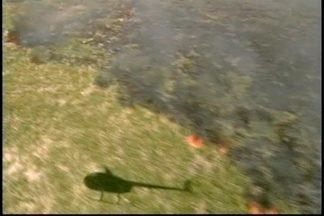 Fogo continua na estação ecológica do Taim - Chega ao quarto dia o combate às chamas na estação localizada no Rio Grande do Sul. O fogo está concentrado em uma área de difícil acesso. Área é considerada como uma das mais importantes estações ecológicas do país.