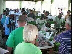 Movimento é intenso no Mercado Público de Rio Grande, RS - Muitas pessoas comparecerem ao local para comprar o peixe para Sexta-feira Santa.