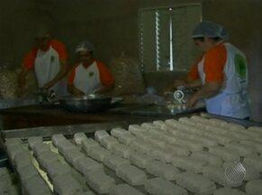 Trabalho de cooperativa muda a vida de agricultores em São Desidério - Mandiocultores contam com renda maior e fazem planos.