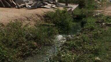 Moradores de uma avenida no Village Campestre esperam solução para a falta de saneamento - Problema no local existe há 12 anos.