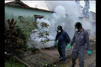 Agentes de saúde coletam material para análise após surto de malária, em Ananindeua - Terreno abandonado próximo ao conjunto Grajaú seria um possível criadouro do mosquito transmissor da doença.