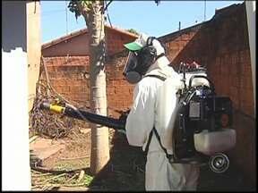 Epidemia da dengue já atinge 32 cidades da região noroeste paulista - A dengue preocupa os moradores de toda a região noroeste paulista. Atualmente 32 cidades enfrentam uma epidemia da doença. Até agora, cinco pessoas morreram em São José do Rio Preto (SP). A última vítima é um paciente de 73 anos.