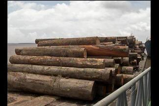 Polícia Fluvial apreende 400 metros cúbicos de madeira - A embarcação, que saiu de Portel, na Ilha do Marajó, estava com a documentação vencida.