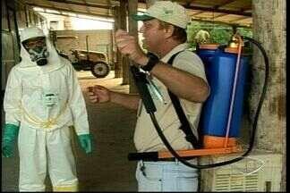 Produtores rurais de Jaguaré, ES, aprendem a manusear agrotóxicos em curso - Para ter uma plantação bonita e produtiva, muitos agricultores usam produtos químicos nas lavouras.